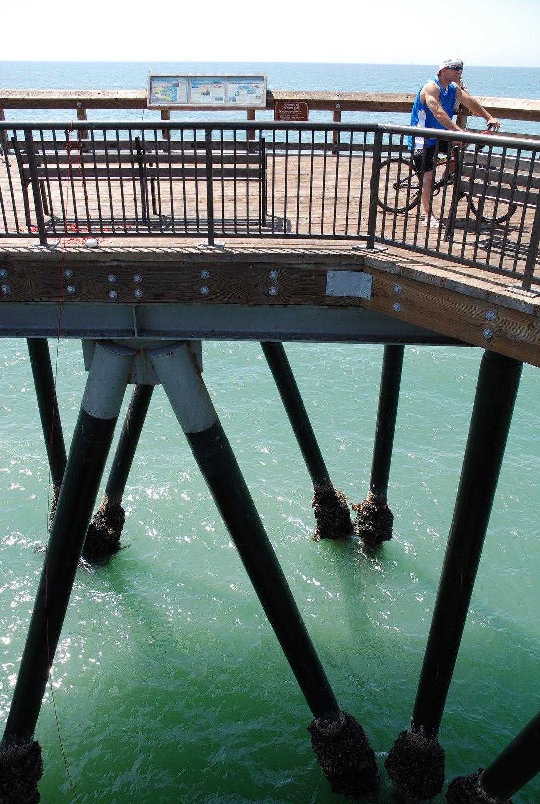 Ventura coast saturday 4 4 2009 any given sundry for Ventura pier fishing